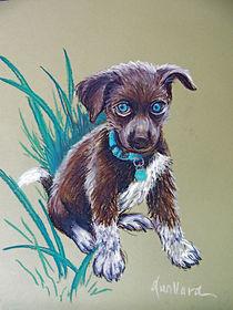 Precious-puppy-09jun10