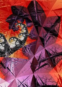 Decipher by Yvonne Fido