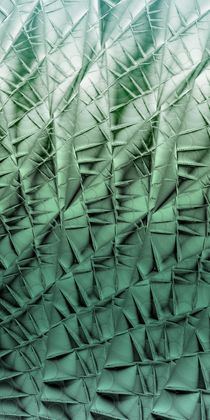 Barnsley-cactus