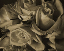 romance by james smit