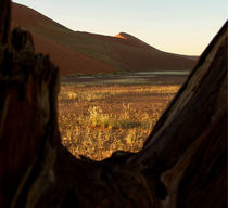 desert namibia by james smit