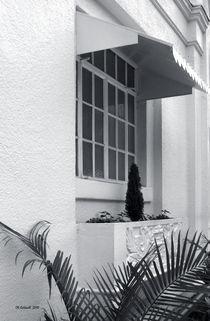 Window Box Landscape by © CK Caldwell
