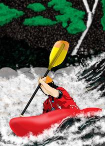 White Water, Red Kayak von Phill Evans