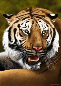Tiger by Fernando Ferreiro