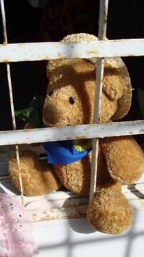 Teddy Bear by tariq3d