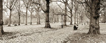 London, Green Park in Autumn von Alan Copson