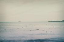 Summer Sea by Natascha Narvaez