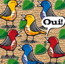 The birds of jardin du Luxembourg by Mike Adey