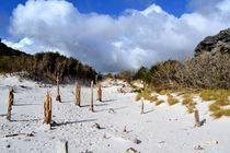 Sandy-resevoir