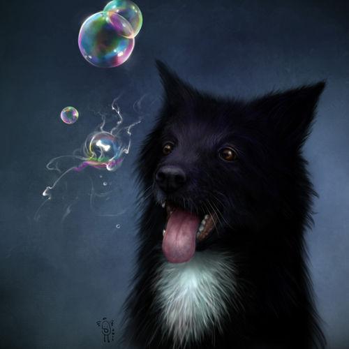 Bubbles-doggy