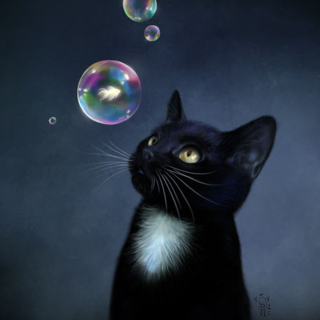 Bubbles-kitty