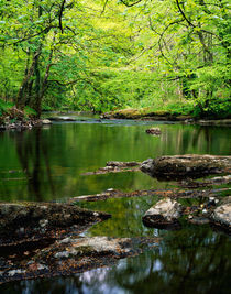River Teign, Dartmoor, Devon, England. by Craig Joiner