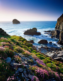 'Backways Cove, Cornwall, England.' von Craig Joiner