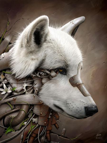 Wild-1-the-wolf