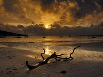 Sunset at Instow Beach, Devon, England. von Craig Joiner