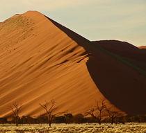 namibia landscape von james smit