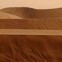 namib desert von james smit