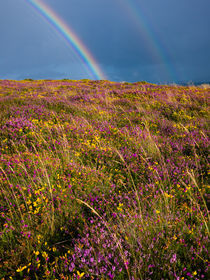 Selworthy Beacon Rainbows von Craig Joiner