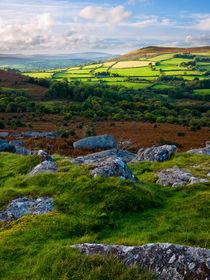 Hayne Down, Dartmoor von Craig Joiner