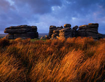 Combestone Tor, Dartmoor by Craig Joiner