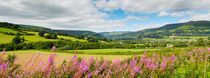 The Usk Valley, Crickhowell von Craig Joiner
