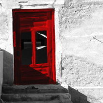 red door von james smit