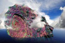 Muschel Insel von tinadefortunata