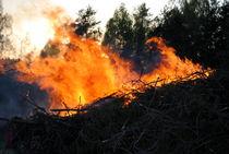 Feuer von tinadefortunata