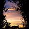 Nature-window-by-lastwendigo-d31kxzh