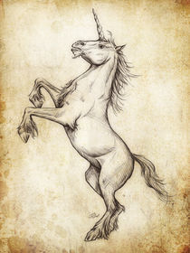 Fantasy Sketch - Unicorn von Christian Damm