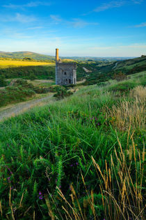 Wheal Betsy Engine House, Dartmoor by Craig Joiner