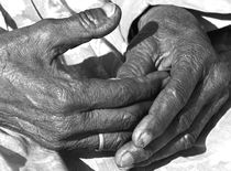 grandmothers hands by james smit