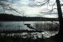 Lake near city. by Krzysztof Adamin