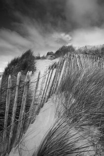 Sand Dunes at Northam Burrows von Craig Joiner