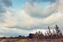 Landschaft in Dänemark von Elisabeth Cölfen