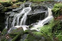 Wasserfall von Walter J. Pilsak