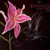 Lilie Blume mit Vögel Ölgemälde  Silvana Czech by Silvana Czech