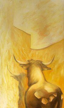 Stier im Morgenlicht von Renate Berghaus