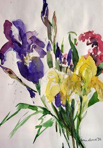 Blaue und gelbe Iris von Beate Steinebach