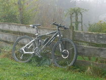 Mountainbike im Nebel by Florian Lagerbauer