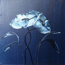 blue velvet I von ilonka Walter