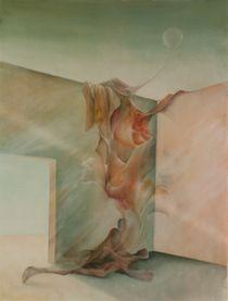 Geburt einer Illusion von Nicola Klemz (Knop)