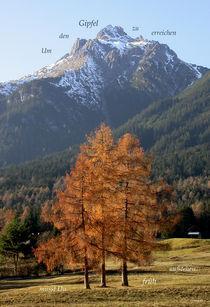 Gipfelstürmer von Gerhard Bär