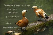 Beistand von Gerhard Bär
