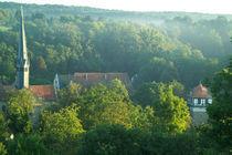 Kloster Maulbronn -  Morgen-Idylle von Werner Schulteis