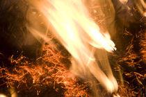 Fire Devil   Feuerteufel von Werner Schulteis