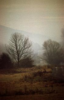 Januarmorgen im Tal von Werner Schulteis
