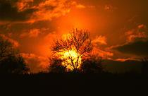 Sonnenuntergang II - sunset II von Werner Schulteis