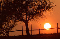 Sonnenuntergang III - sunset III von Werner Schulteis