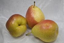 Birne - Birnen - pear - pears by Werner Schulteis